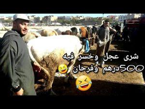 من سوق الأربعاء لبيع المواشي بمكناس : شوفو الخير تبارك الله