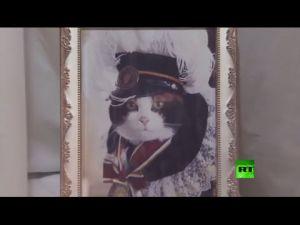 وفاة القطة مديرة محطة القطار في اليابان
