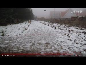رواج سياحي في مدينة إفران تزامنا مع بدأ تساقط الثلوج
