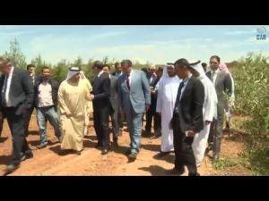 وزيران مغربيان يزوران مزرعة الظاهرة للزيتون أحد المشاريع الاستثمارية الاماراتية فى مكناس