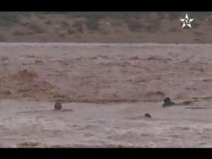 لقطة مؤثرة...لحظة جرف السيول لمواطنين