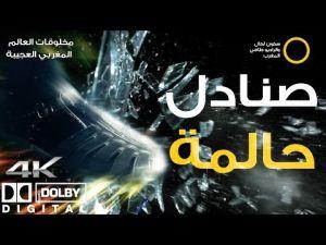 برنامج مخلوقات العالم المغربي العجيبة : الحلقة السادسة