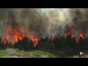 اندلاع حريق بمنطقة مديونة الغابوية بطنجة