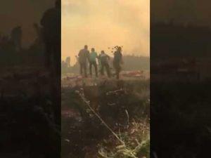 ملك الاردن يشارك بإطفاء حريق غابة الكمالية